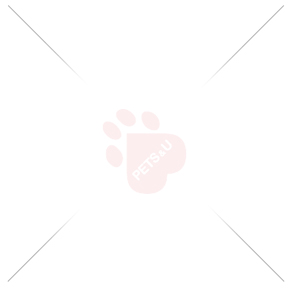 Kong BraidZ Zebra M - играчка за кучета
