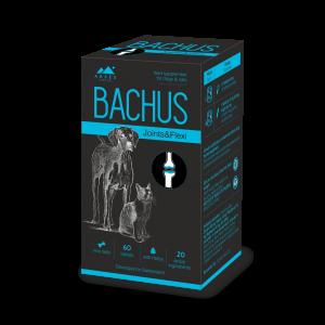 BACHUS JOINTS&FLEXI  - 60 таб - поддържа подвижността на ставите и структурата на хрущялите