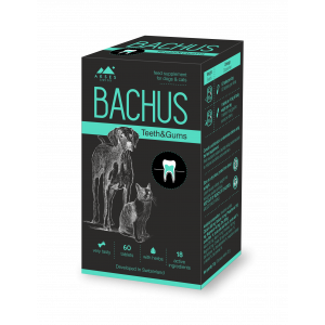 BACHUS TEETH&GUMS - 60 таб. - заздравява зъбите и венците, предпазва от зъбен камък