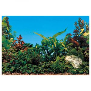 Ferplast Aquarium Background BLU 9054