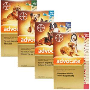 Bayer Advocate Dog външно и вътрешно обезпаразитяване на куче