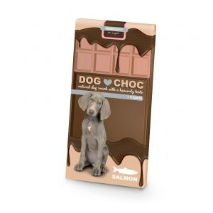 EBI DogChoc Salmon 100 g - Шоколад за кучета, сьомга