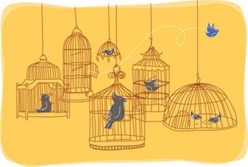 Избор на клетка за птицата